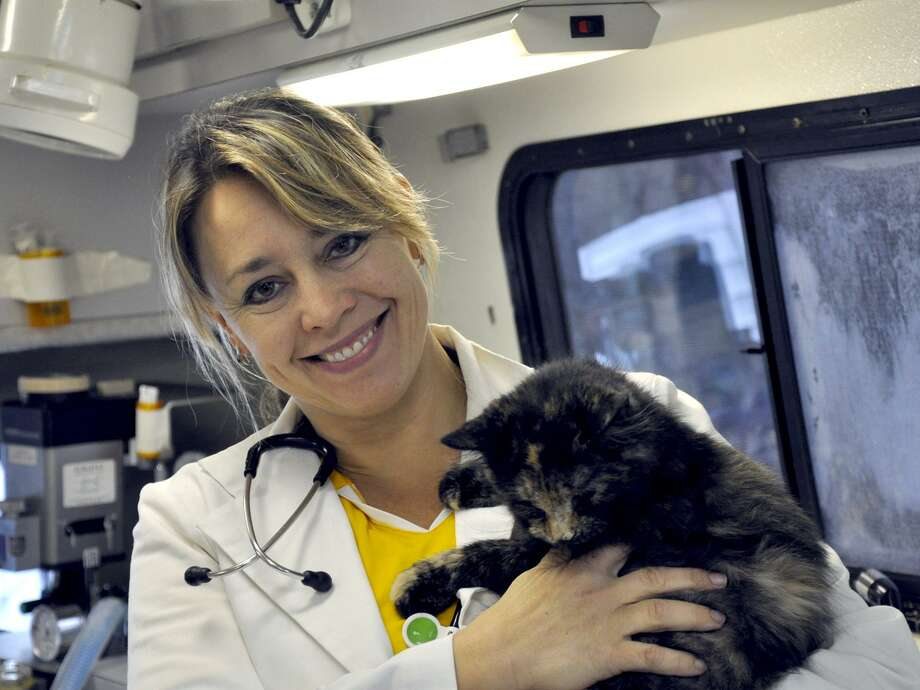 Dr. Rebecca Saria and one of her patients, a calico cat, inside her mobile surgery center.
