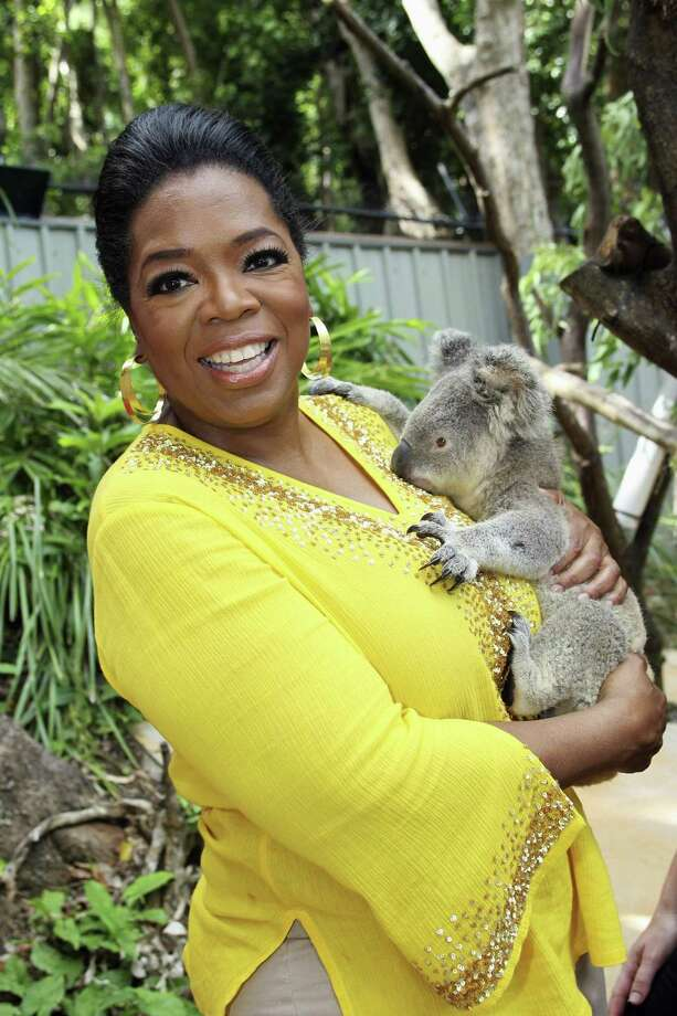 This photo taken Wednesday, Dec. 8, 2010 and provided by Harpo Productions Inc., shows talk-show host Oprah Winfrey holding an 18-month-old koala named Elvis at the Hamilton Island Wildlife Park in Whitsundays, Australia. Winfrey is on an eight-day trip with 300 of her audience members. (AP Photo/Harpo Productions Inc., George Burns) Photo: ASSOCIATED PRESS / AP2010