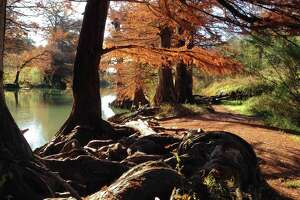 Guadalupe River State Park offers scenic spots for river recreation any season of the year.