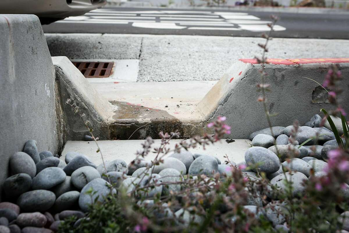 Water is runs into one of the newly installed rain gardens by the SF Public Utilities Commission instead of the sewer drain at Holloway Ave and Jules Ave in San Francisco, Calif. on Thursday, August 17, 2017.