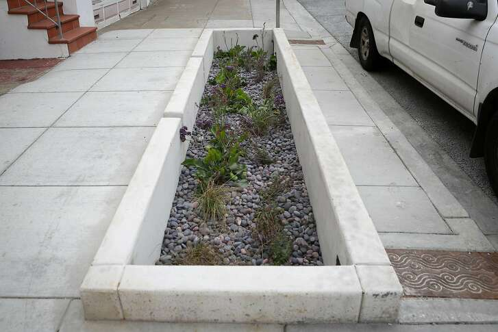 One of the newly installed rain gardens by the SF Public Utilities Commission is seen at the intersection of Holloway Ave and Jules Ave in San Francisco, Calif. on Thursday, August 17, 2017.