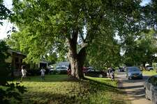 Children play in the yard outside one of the homes on Rapp Road, during the Rapp Road community's 60th Family Reunion Weekend on Sunday, Aug. 20, 2017, in Albany, N.Y.    (Paul Buckowski / Times Union)