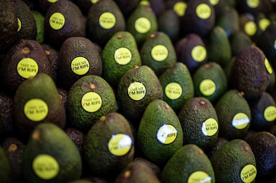 An avocado production shortfall in California has led to rising prices for the popular food. Photo: Dreamstime /TNS / Los Angeles Times
