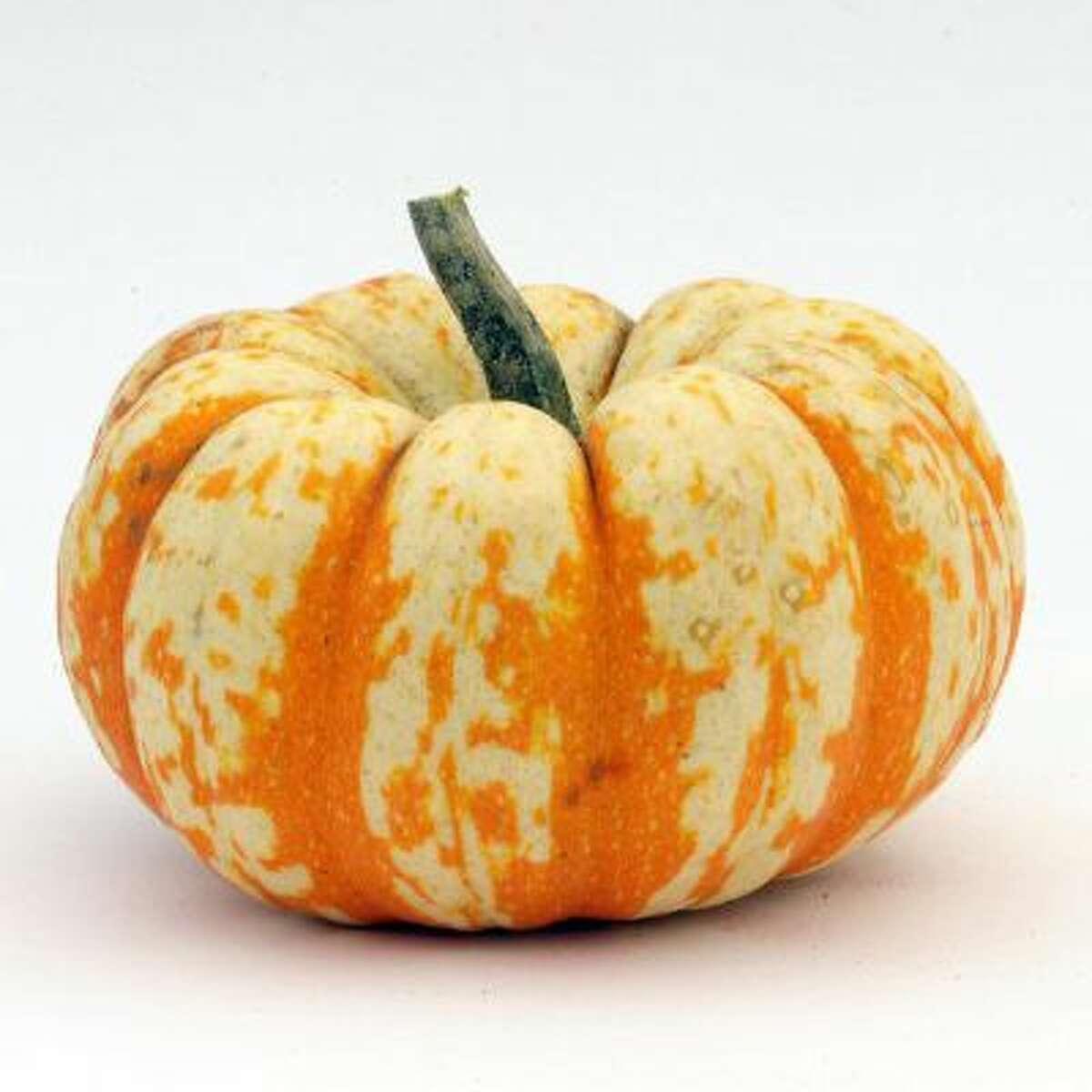 Lil' Pumpkemon pumpkin.