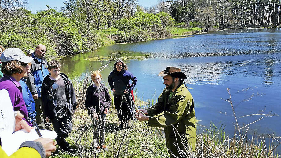 N.F. Ambery photo Andy Dobos and Deneen Bernier demonstrate edible plants in the wild at White Memorial Conservation Center. Photo: Journal Register Co.