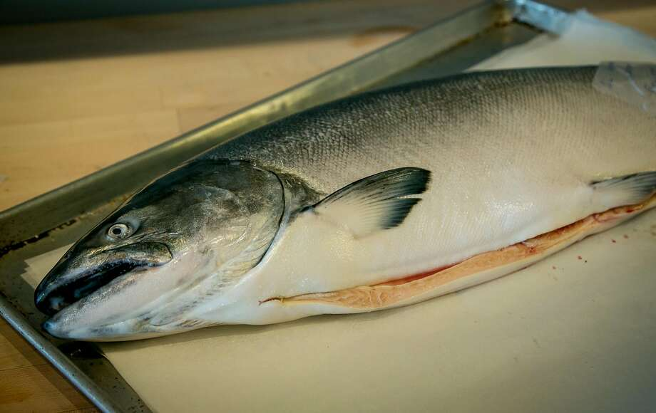 A whole king salmon at Bouli Bar in San Francisco. Photo: John Storey, Special To The Chronicle