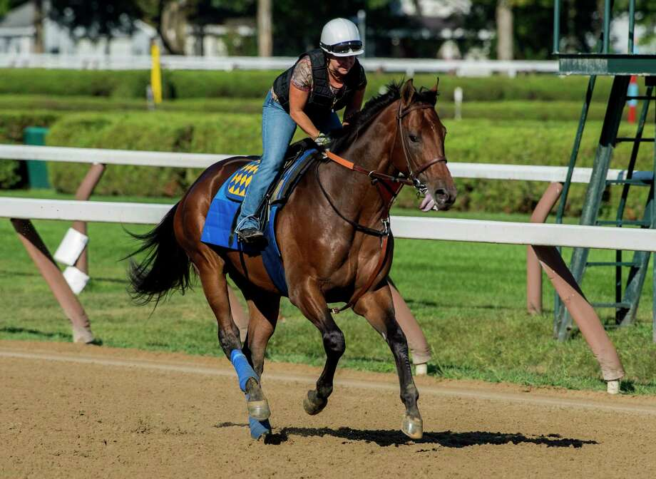 Exercise rider Dana Barnes takes Travers Stakes entrant for a gallop around the main track at the Saratoga Race Course Wednesday Aug. 23, 2017 in Saratoga Springs, N.Y.  (Skip Dickstein/Times Union) Photo: SKIP DICKSTEIN