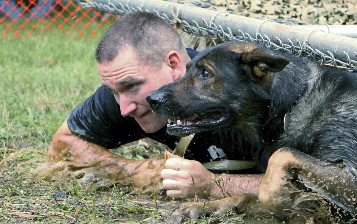 In this 2013 photo, former Enfield Police Department K9 Officer Matthew Worden and his dog Falco negotiate a low crawl obstacle during the annual K9 Olympics in Mansfield, Connecticut. Eight brutality lawsuits settled over the past 10 months paint a disturbing picture of Worden. His lawyer denies Worden did anything wrong.