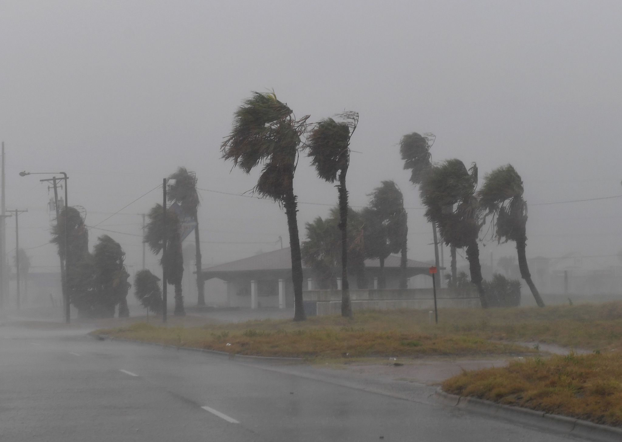 Corpus Christi newspaper staff evacuates to shelter due to Hurricane Harvey - Houston Chronicle