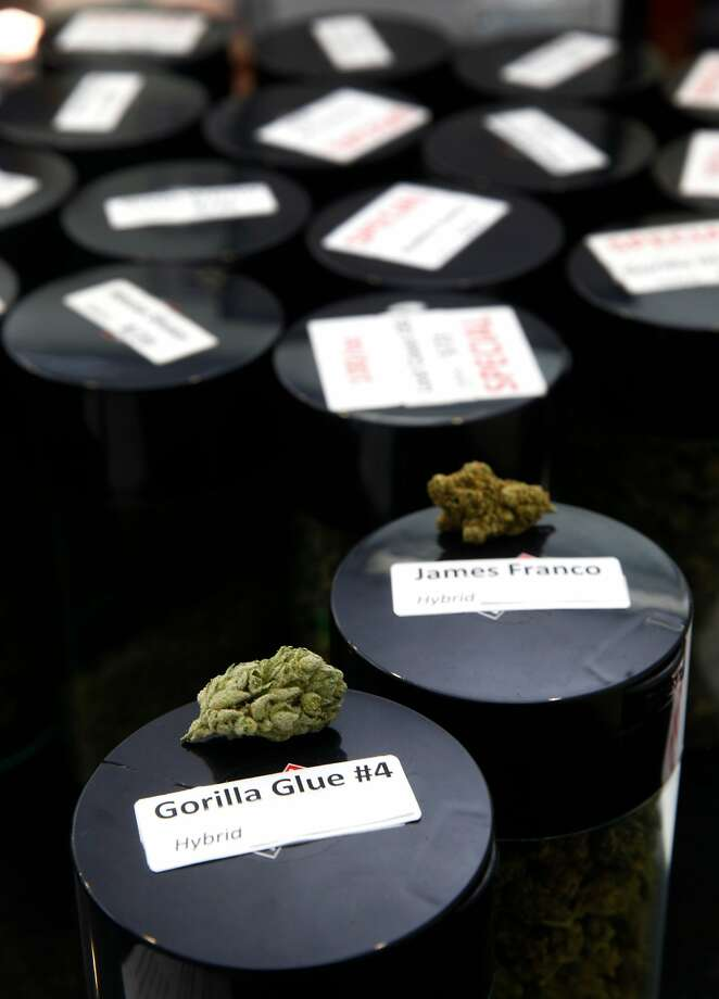 Gorilla Glue and James Franco varieties of medical marijuana are displayed at the Mission Orga n ic dispensary in San Francisco. Producers often use pop culture references in naming. Photo: Paul Chinn, The Chronicle
