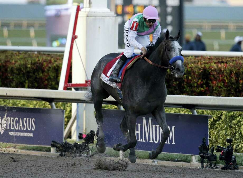 Jockey Mike Smith crosses the finish line riding Arrogate to win the inaugural running of the $12 million Pegasus World Cup on Saturday. Photo: Lynne Sladky — The Associated Press  / Copyright 2017 The Associated Press. All rights reserved.