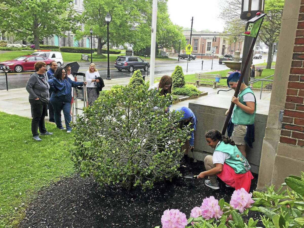 Members of Girl Scout Junior Troop 40004 installed birdhouses in front of City Hall in Torrington Monday. The project is part of earning a Bronze Award — a junior's highest honor — but also to brighten up the community, the girls said.