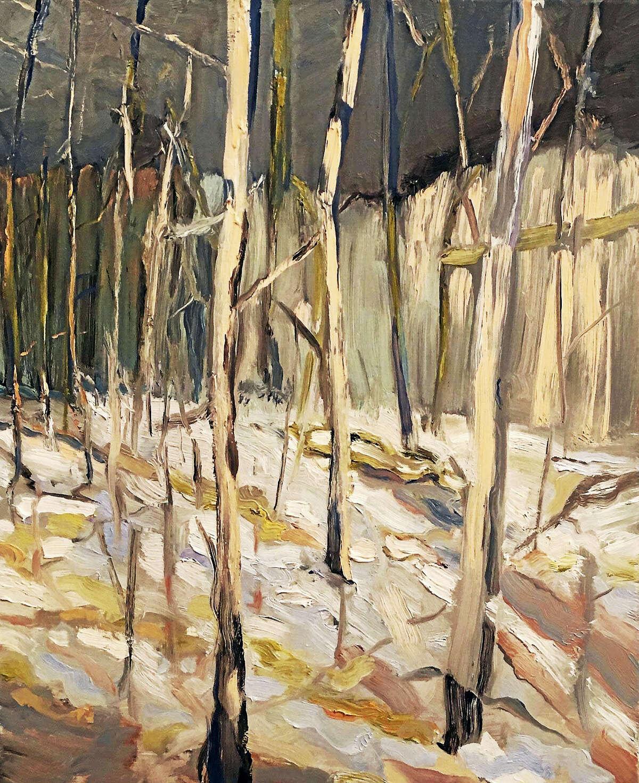 Hoopy Woods, Karen Simmons, oil on linen, 24 x 20 in.