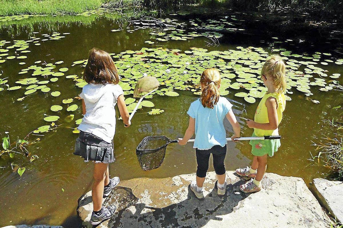 Children can experience a variety of outdoor activities at Flanders Nature Center's summer camp sessions, which are now open for enrollment.