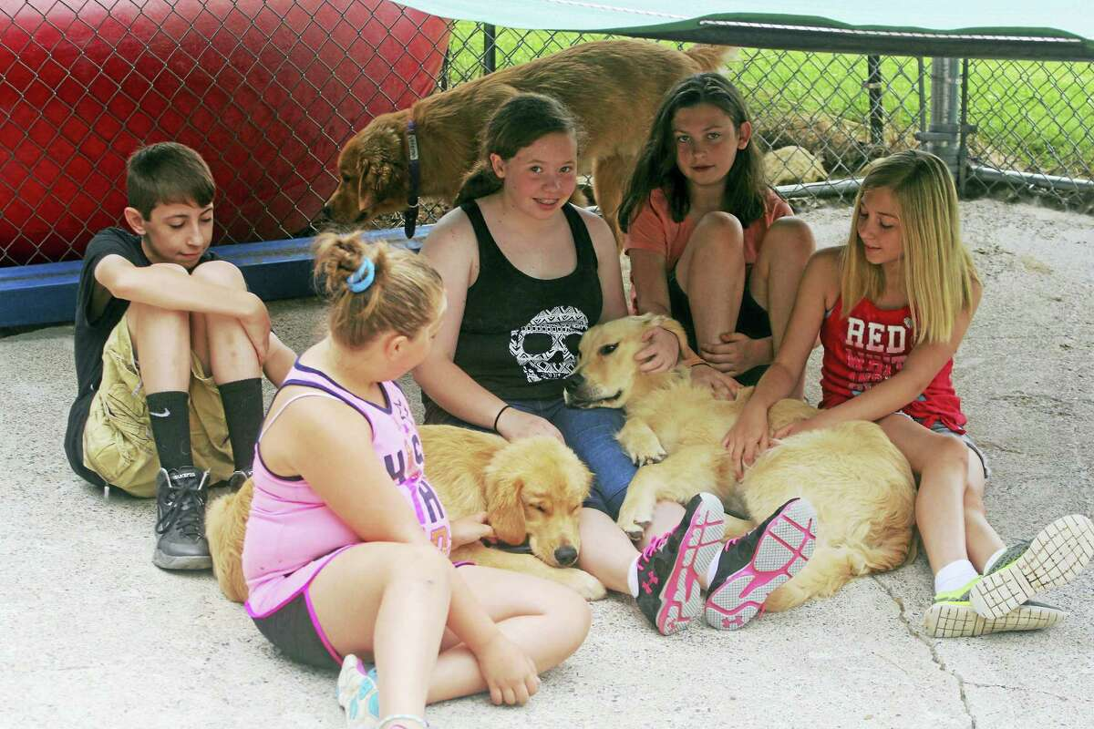 Children can spend time with service dogs in training at ECAD's annual summer camp.