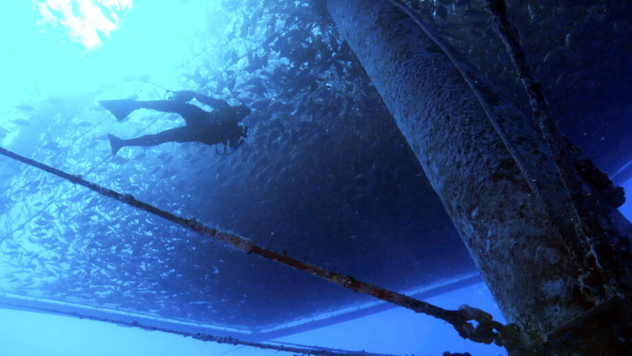 In this image made from video, a diver swims amongst a fish farm off the shore of Hawaii's Big Island near Kona. The National Oceanic and Atmospheric Administration is creating a plan for managing commercial fish farms, known as aquaculture, in federal waters around the Pacific. Photo: Paul B. Hillman — NOAA Fisheries Via AP  / NOAA Fisheries