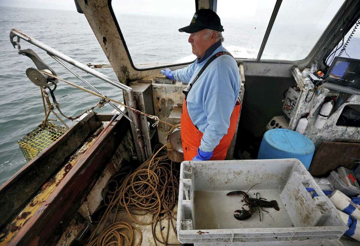 In this May 2, 2016 photo, Richard Sawyer, Jr., fishes on Long Island Sound off Groton, Conn. Sawyer said he says he now catches less in a week than he used to catch in half of a day. Scientists say populations of lobsters off of Connecticut, Rhode Island and southern Massachusetts have declined as waters have warmed.