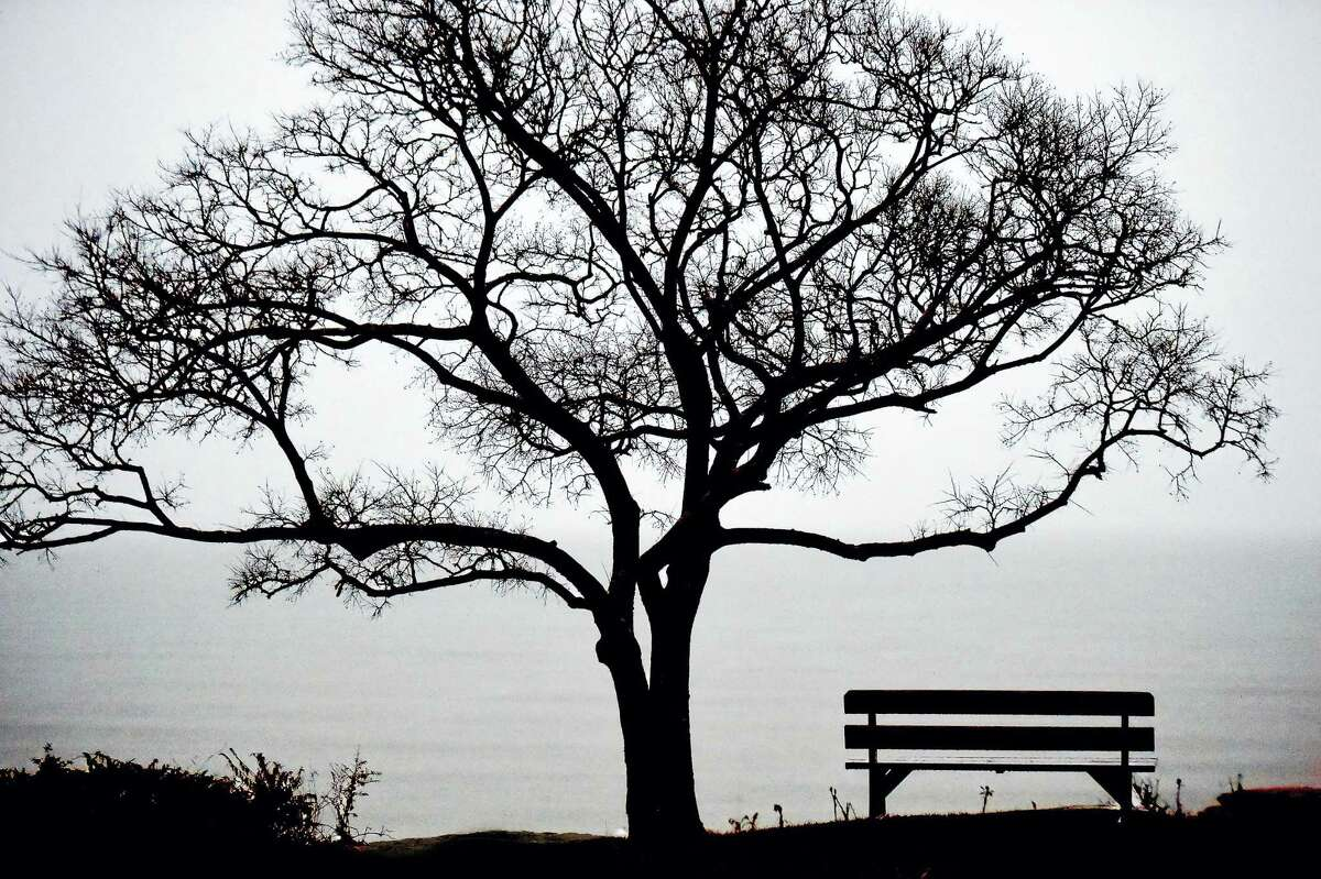 A tree, a bench and a view of Long Island Sound photographed from Linden Avenue in the Linden Shore District in Branford creates a peaceful setting, Thursday, December 29, 2016. (Catherine Avalone/New Haven Register)