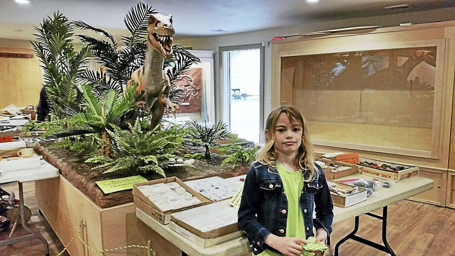 Claire Wheaton, 7, of New Milford checked out the Connecticut Museum of Mining & Mineral Sciences' gem collection under the watchful eyes of the animatronic coelophysis. Photo: N.F. Ambery Photo