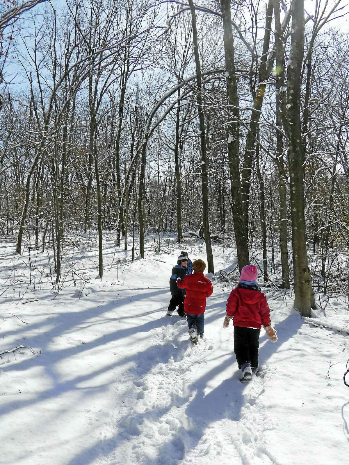 """On Monday, January 16 while off from school for the Martin Luther King Day holiday, kids in grades kindergarten through 5th are invited to come to Flanders to experience """"A Flanders Adventure"""" where they will spend the day learning about the animals that live at Flanders and in the wild. We will be taking a hike to find tracks to see who is active in the snow. This will be a fun filled day packed with exploring the great outdoors, and age appropriate stories, games and crafts. Preregistration is required. Flanders is offering three different sessions for this special adventure. Choose the morning session from 9AM to 1PM, the afternoon session from 1-5PM or a full day session which goes from 9AM -5PM. Parents are asked to have their children dress for the weather and to bring a bag lunch or snack. Pre-registration is required. The cost per child for either the morning or afternoon session is $30 members and $40 for nonmembers. Full day cost is $60 for members and $80 for nonmembers. Early care is available at $7 per hour. To register, call Flanders at (203) 263-3711, extension 10. For a full listing of all the programs for kids and adults coming up at Flanders visit www.flandersnaturecenter.org or like them on their Facebook page."""
