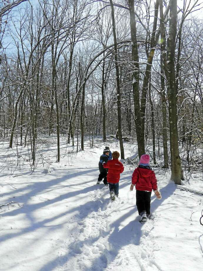 """On Monday, January 16 while off from school for the Martin Luther King Day holiday, kids in grades kindergarten through 5th are invited to come to Flanders to experience  """"A Flanders Adventure"""" where they will spend the day learning about the animals that live at Flanders and in the wild.  We will be taking a hike to find tracks to see who is active in the snow. This will be a fun filled day packed with exploring the great outdoors, and age appropriate stories, games and crafts. Preregistration is required.  Flanders is offering three different sessions for this special adventure.  Choose the morning session from 9AM to 1PM, the afternoon session from 1-5PM or a full day session which goes from 9AM -5PM.   Parents are asked to have their children dress for the weather and to bring a bag lunch or snack.  Pre-registration is required. The cost per child for either the morning or afternoon session is $30 members and $40 for nonmembers. Full day cost is $60 for members and $80 for nonmembers. Early care is available at $7 per hour. To register, call Flanders at (203) 263-3711, extension 10. For a full listing of all the programs for kids and adults coming up at Flanders visit www.flandersnaturecenter.org or like them on their Facebook page. Photo: Digital First Media"""