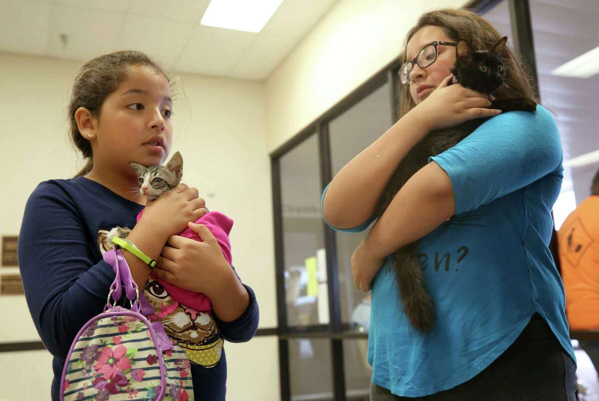 Brianna Solis, left, and her sister Emily hold their kittens, Tiger and Glory Mae respectively, as they wait to evacuate the Bay City Civic Center before Hurricane Harvey made landfall Friday, Aug. 25, 2017, in Bay City, Texas. ( Godofredo A. Vasquez / Houston Chronicle )