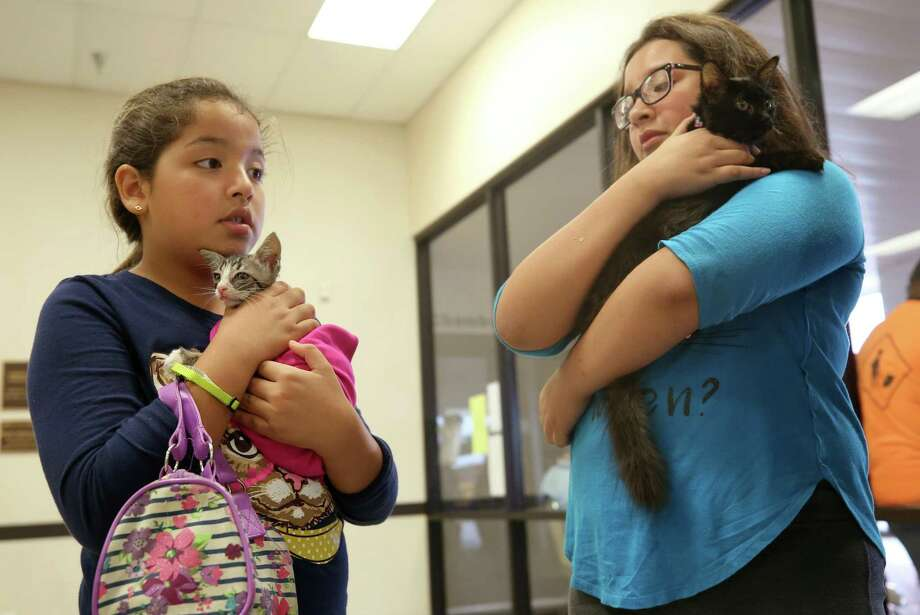 Brianna Solis, left, and her sister Emily hold their kittens, Tiger and Glory Mae respectively, as they wait to evacuate the Bay City Civic Center before Hurricane Harvey made landfall Friday, Aug. 25, 2017, in Bay City, Texas.  ( Godofredo A. Vasquez / Houston Chronicle ) Photo: Godofredo A. Vasquez, Staff / Houston Chronicle / Godofredo A. Vasquez