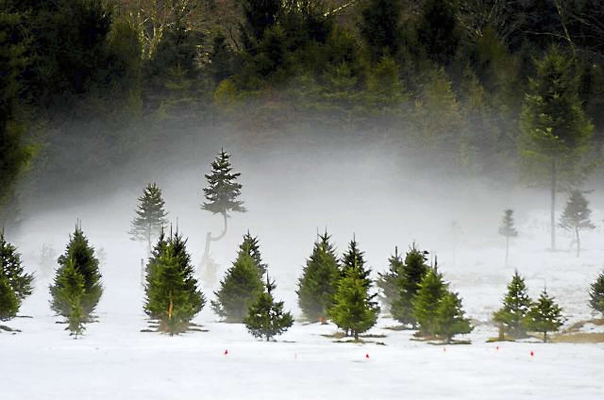 Contributed photoFlanders Nature Center invites photographs of wintry scenes for its
