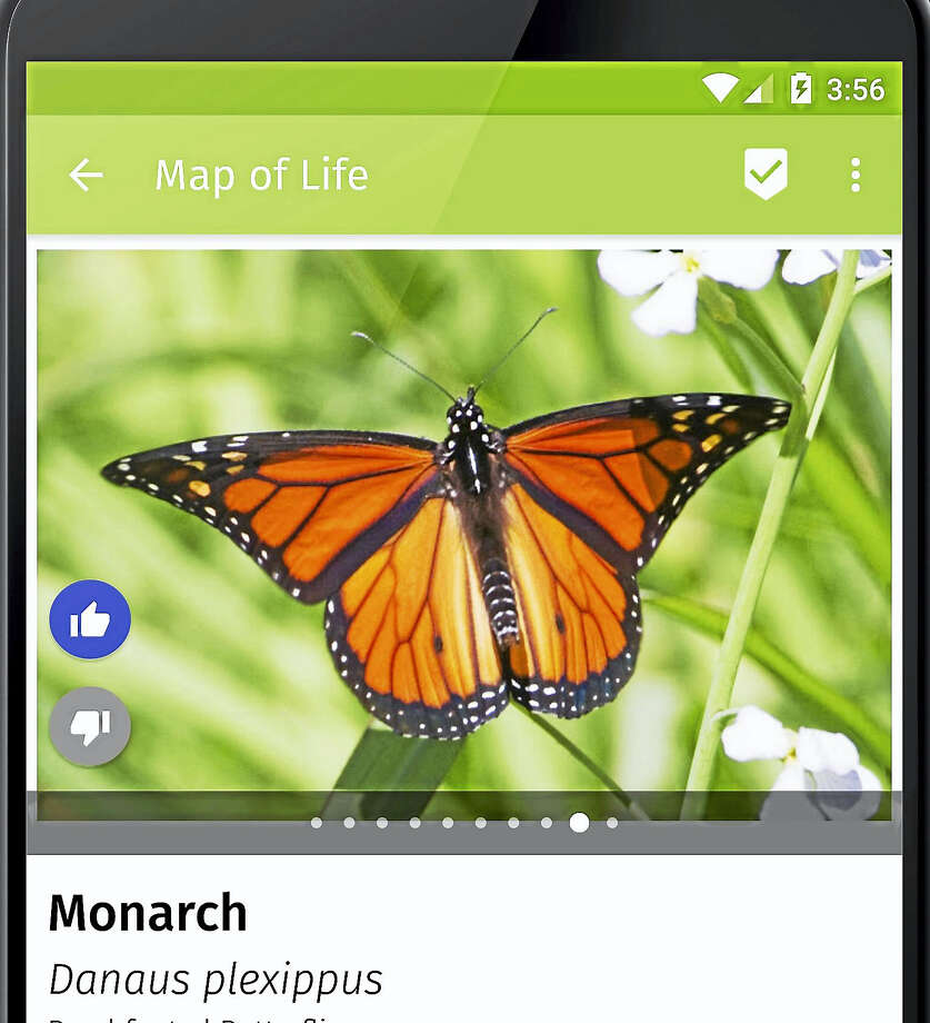 The Map of Life phone app Photo: CONTRIBUTED PHOTO