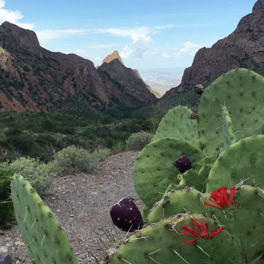 To hike to the Window in Big Bend National Park takes a couple of hours on the trail that starts at the Chisos Basin Campground. / Houston Chronicle