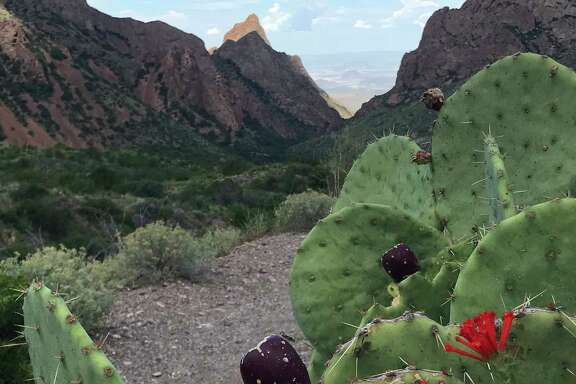 To hike to the Window in Big Bend National Park takes a couple of hours on the trail that starts at the Chisos Basin Campground.