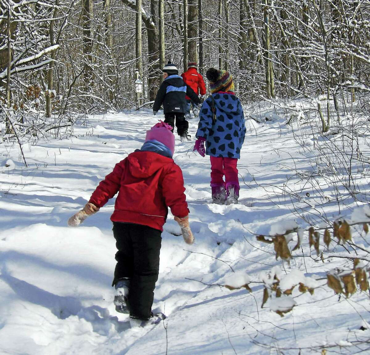 Contributed photo Children on break from school Feb. 20-22 can come to Flanders Nature Center for outdoor activities.