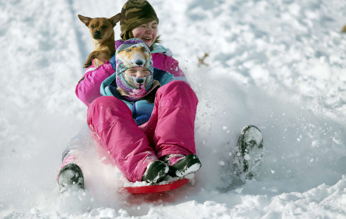 Samantha Kizlowski, front, 10, Cadence Ambrose, 11, and Max the dog sled down a hill in McDade Park in Scranton, Pa., on Thursday, Feb. 9, 2017.