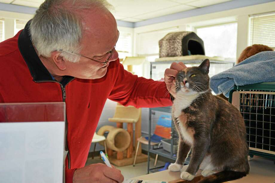 Michael Pinevich and his mother, of Woodbury, came to adopt Millicent from the Animal Welfare Society in New Milford Friday. Photo: Kaitlin McCallum — The Register Citizen