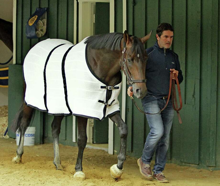Trainer Keith Desormeaux walks Preakness Stakes hopeful Exaggerator in the stakes barn at Pimlico Race Course Wednesday in Baltimore following a morning jog. Photo: GARRY JONES — THE ASSOCIATED PRESS  / FR50389 AP