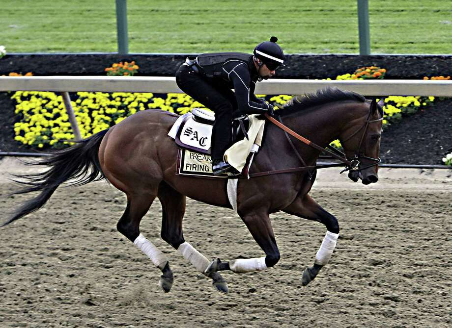 Exercise rider Umberto Gomez gallops Firing Line at Pimlico Race Course in Baltimore on Friday. Photo: Garry Jones — The Associated Press  / FR50389 AP