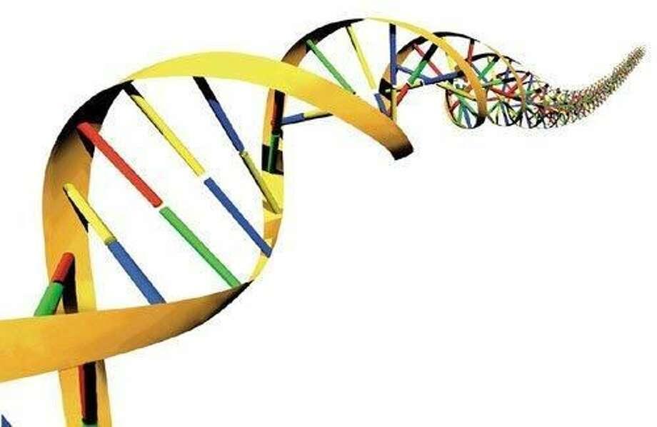 DNA. Photo: FILE PHOTO