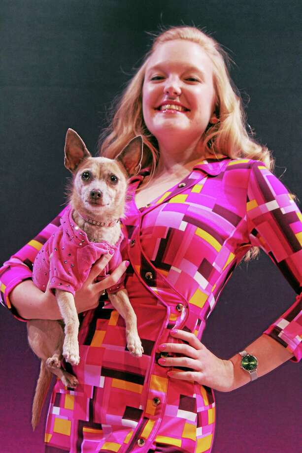 """Contributed photo — Seven Angels Theatre Lawson Young plays the role of Elle Woods with her pooch, Bruiser, in Seven Angels Theatre's presentation of """"Legally Blonde."""" Photo: Journal Register Co."""