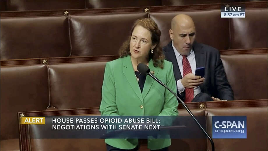 CONTRIBUTED PHOTO U.S. Rep. Elizabeth Esty, D-5, speaks on the House floor Friday. Photo: Journal Register Co.