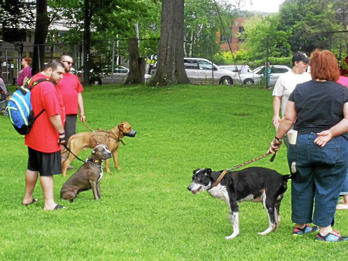 """A """"Pittie Party"""" in Coe Memorial Park this summer was a benefit for The Little Guild of St. Francis, an animal shelter and rescue in West Cornwall."""