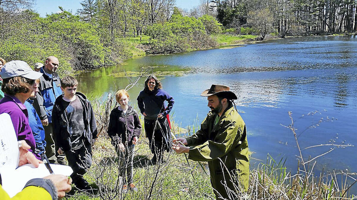 Andy Dobos and Deneen Bernier demonstrate edible plants in the wild at White Memorial Conservation Center.