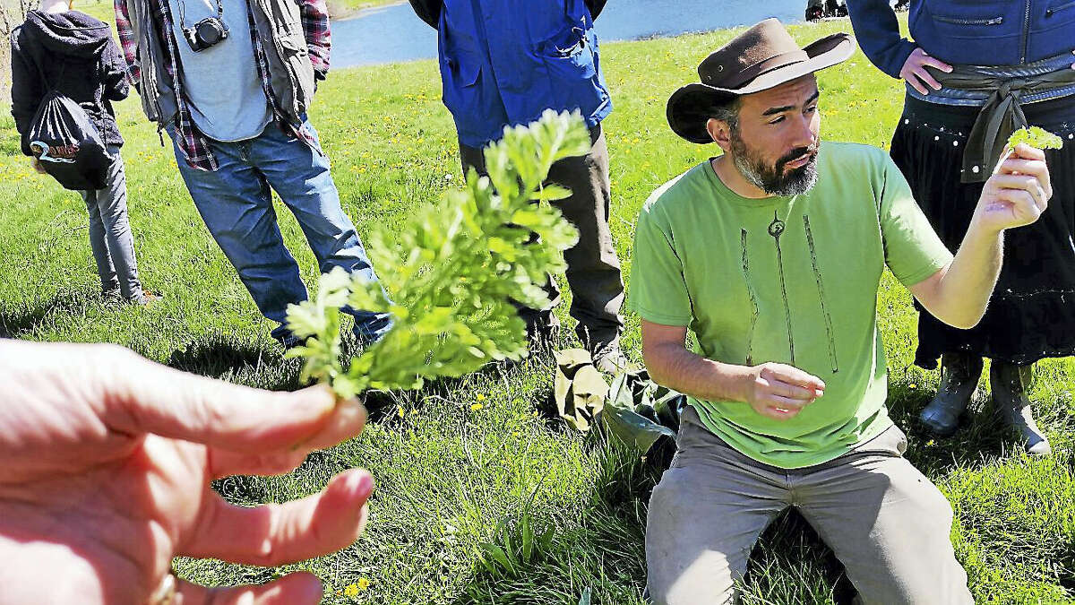 Andy Dobos shows the group a stem of Queen Anne's lace, or wild carrot.
