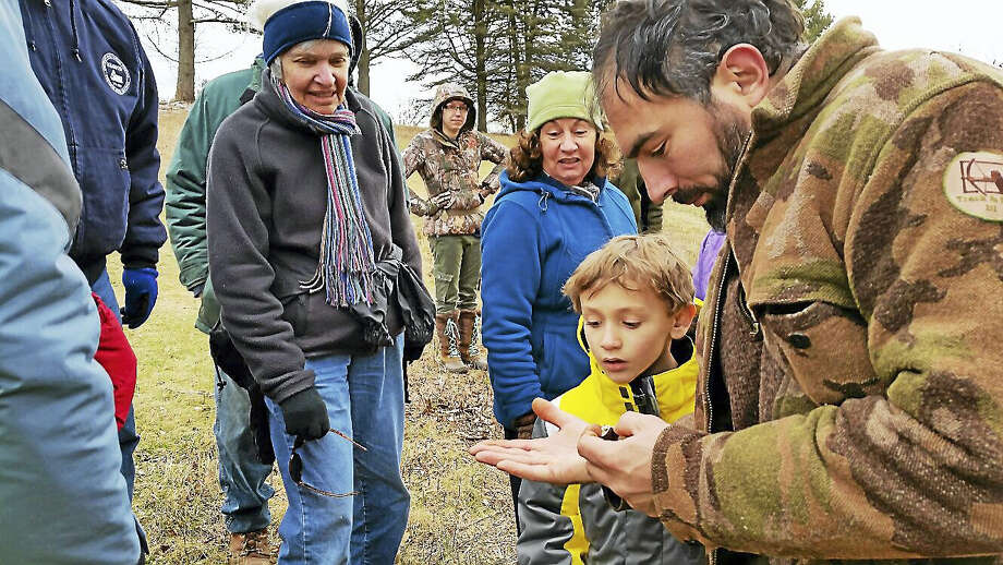 N.F. Ambery Instructor Andy Dobos exhibited the contents of a gall at the free monthly Wildlife Tracking Club event. Photo: Journal Register Co.