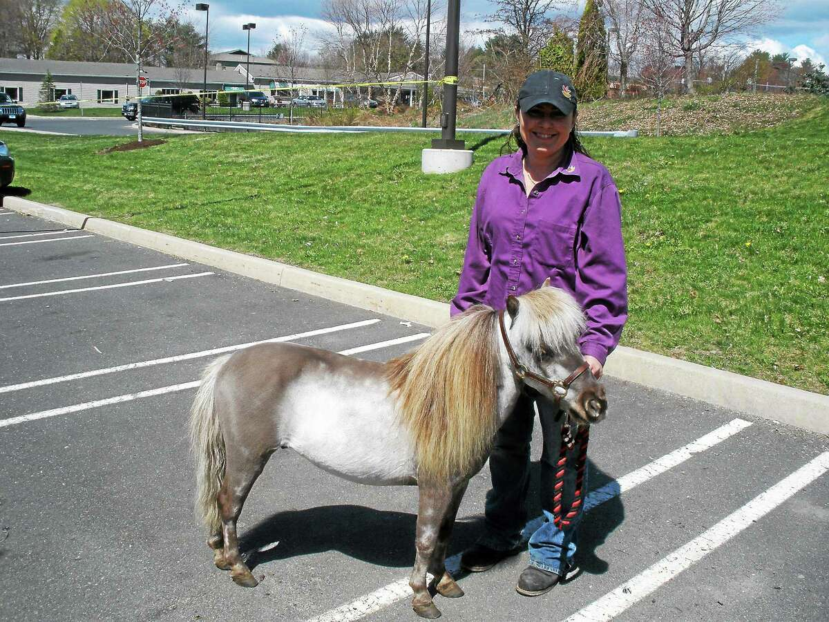 Beatrice Brainard of Shoemaker Stables in Winsted and 9-year-old Pony Danny at the Jimmy Fund fundraiser Saturday, May 2, 2015.