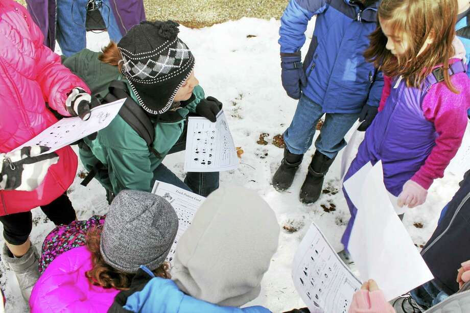 A wildlife camp at White Memorial Conservation Center in Litchfield teaches children about nature and its creatures. Photo: Photo By John Nestor