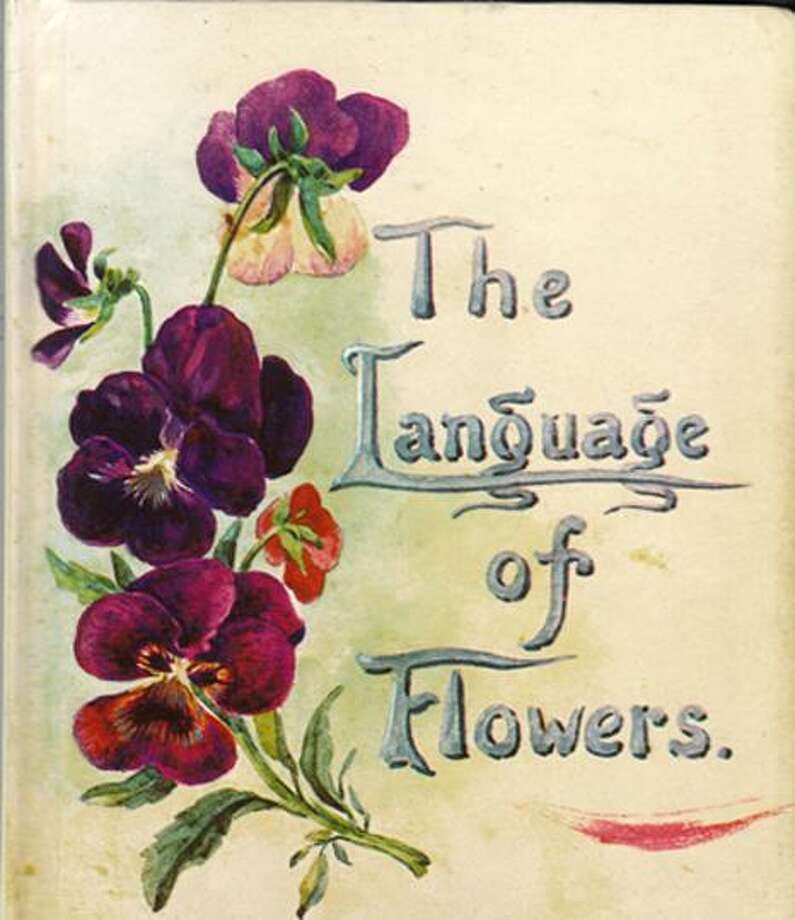 "Wilton Historical Society Museum Educator Lola Chen will discuss pressed flowers and the ""language of flowers"" from 11 a.m. to 12:30 p.m. on Saturday, Sept. 16. Photo: Contributed Image"