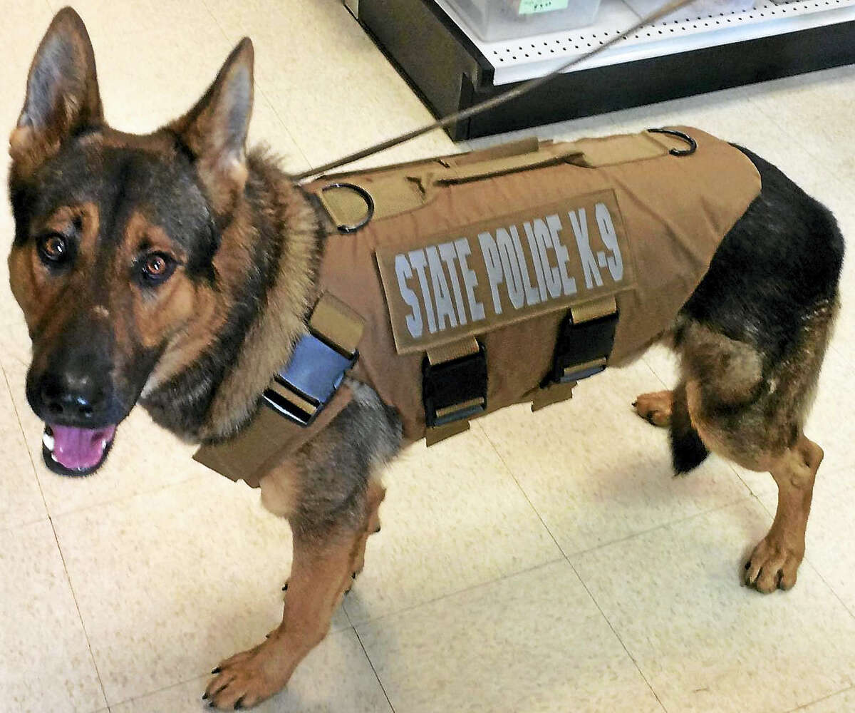 State Police K9 Tobi, who is assigned to Troop L, has received a bullet- and stab-protective vest thanks to a donation from Stacy's PetPorium in Litchfield.