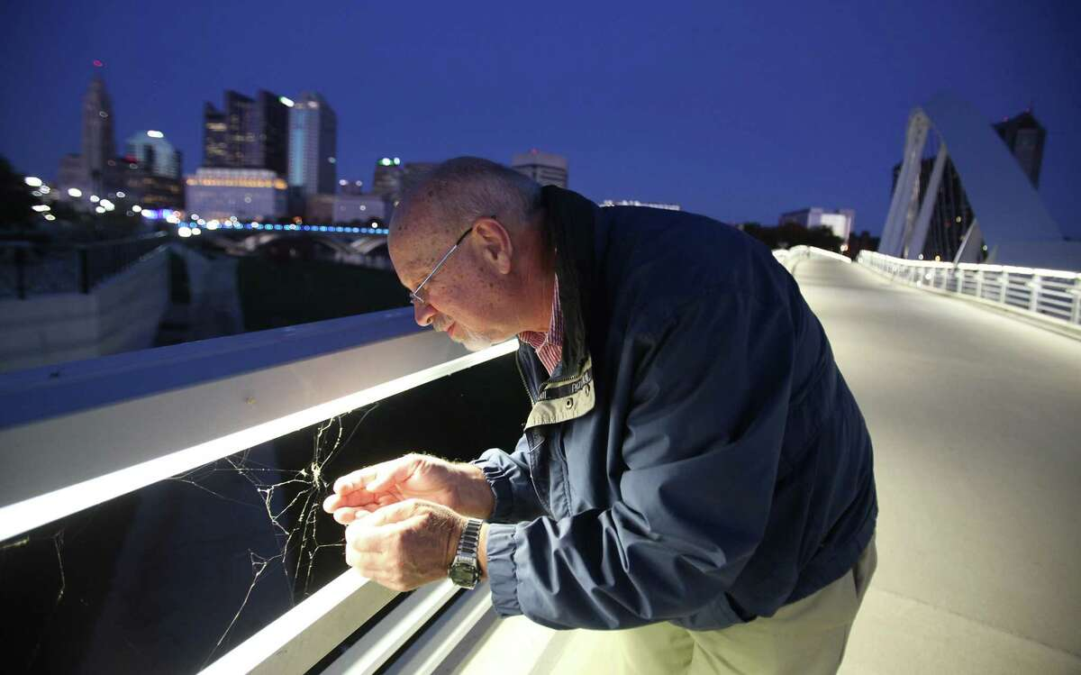 Ohio State University entomologist David Shetlar lifts one of the thousands of spiders that are living on the new Main Street bridge over the Scioto River in downtown Columbus, Ohio, on Oct. 19, 2015. He estimated that up to 5,000 spiders live there.