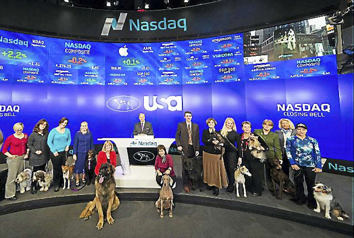 These 15 dogs and owners were chosen to represent the 3,000 dogs entered in the 140th Westminster Kennel Club Dog Show.