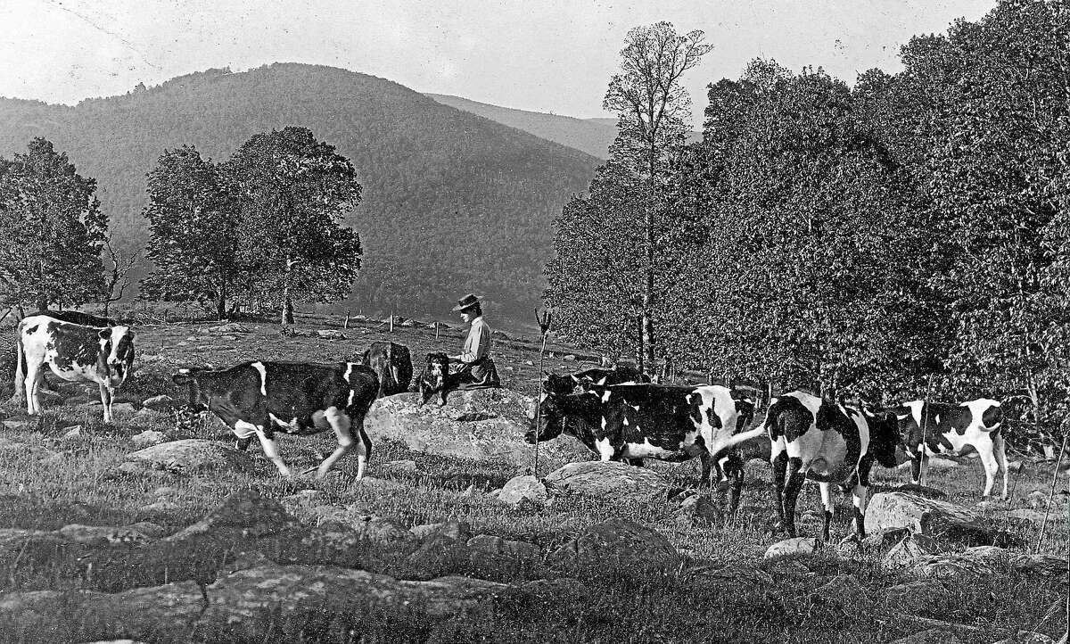 Contributed photos The history of dairy farming is depicted in photographs, records and artifacts at the Cornwall Historical Society's new exhibit, opening in late June.